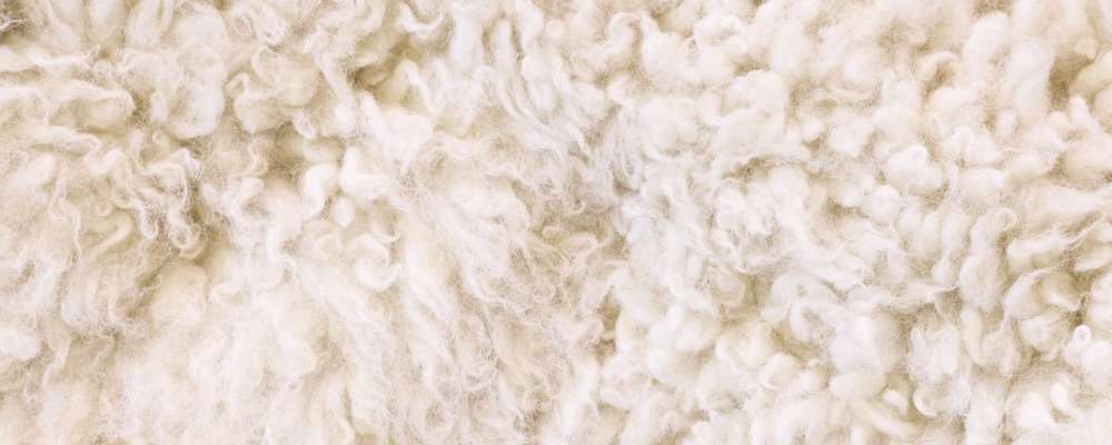 properties of wool